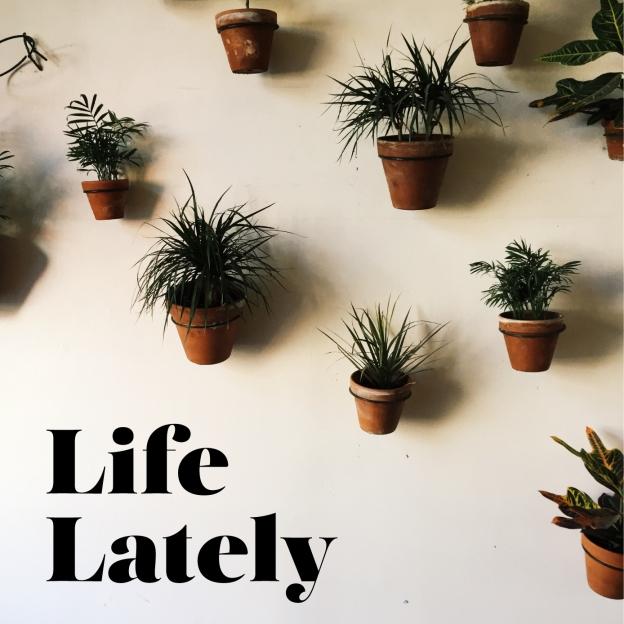 lifelately